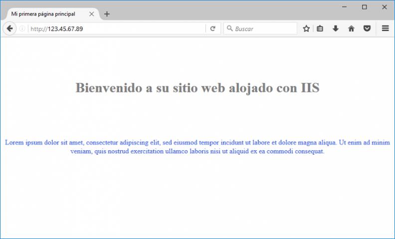 Anexo 13 Sitio web IIS