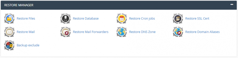 Anexo 5 Restore Manager